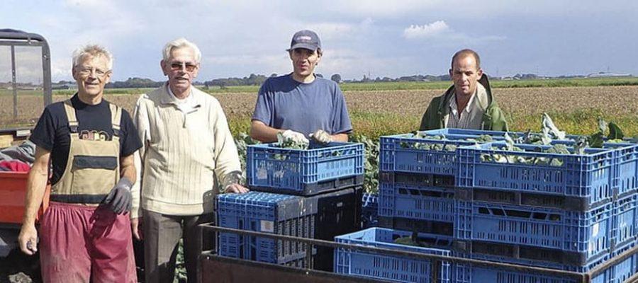 Voedselbanken Nederland